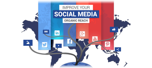Improve Your Social Media Organic Reach