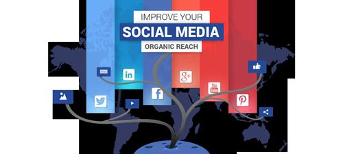 Improve Your Social Media Organic Reach