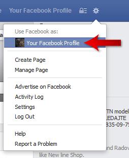 Facebook Profile Login