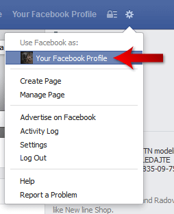 Facebook Profile Login