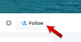 Follow the Twitter Profile