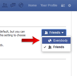 Facebook Follow Privileges 3